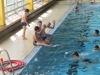 schwimmen7