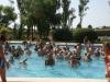 pool2-jpg